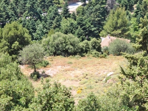 Земельный участок 5500 m² Эвия