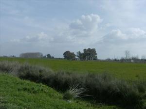 Земельный участок 40000 m² на Пелопоннесе
