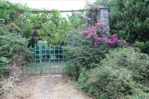 Земельный участок 5600 m² на о. Корфу