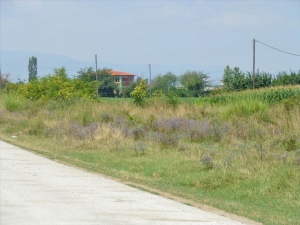 Земельный участок 5180 m² на Олимпийской Ривьере