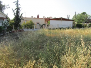 Земельный участок 4500 m² на Олимпийской Ривьере