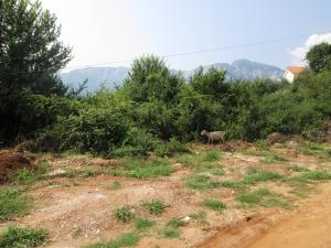 Земельный участок 461 m² на Тасосе