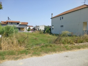 Земельный участок 1175 m² на Олимпийской Ривьере