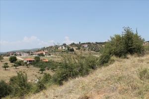 Земельный участок 8000 m² на Ситонии (Халкидики)