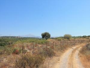 Земельный участок 5800 m² на Крите