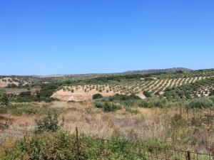 Земельный участок 6800 m² на Крите