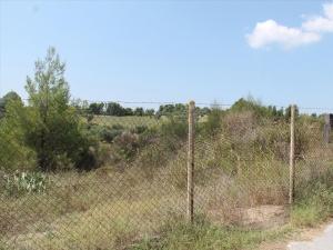 Земельный участок 4025 m² на Кассандре (Халкидики)