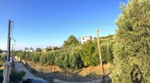 Земельный участок 500 m² на Крите