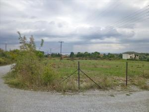 Земельный участок 5000 m² на Олимпийской Ривьере