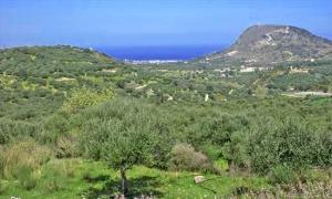 Земельный участок 1000 m² на Крите