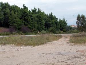 Земельный участок 2180 m² на Кассандре (Халкидики)