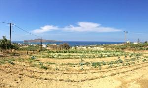 Земельный участок 5500 m² на Крите