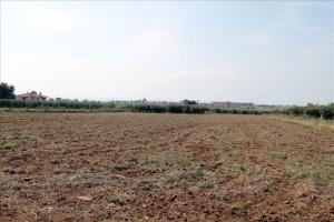Земельный участок 800 m² на Ситонии (Халкидики)
