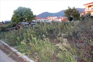 Земельный участок 450 m² в Халкидиках