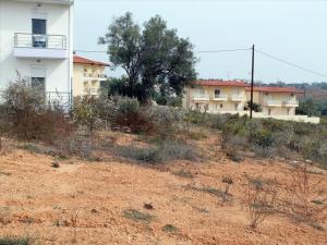 Земельный участок 297 m² на Кассандре (Халкидики)