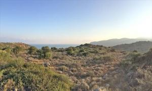 Земельный участок 12800 m² на Крите