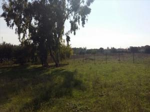 Земельный участок 405 m² в Халкидиках