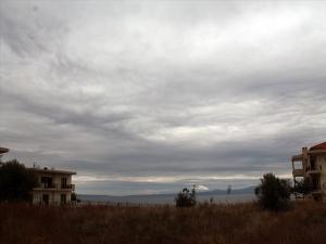 Земельный участок 2500 m² на Кассандре (Халкидики)