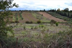 Земельный участок 5350 m² в пригороде Салоник