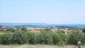 Земельный участок 6600 m² в Халкидиках