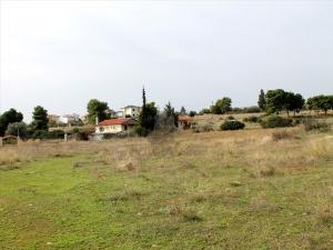 Земельный участок 10000 m² Эвия