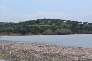 Земельный участок 10000 m² на Кассандре (Халкидики)