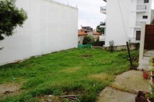 Земельный участок 340 m² на Ситонии (Халкидики)