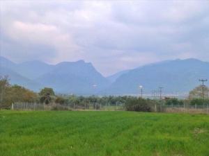 Земельный участок 1200 m² на Олимпийской Ривьере