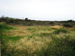 Земельный участок 2406 m² на Крите