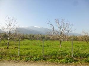 Земельный участок 10000 m² на Олимпийской Ривьере