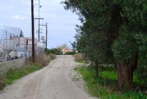 Земельный участок 650 m² на Кассандре (Халкидики)