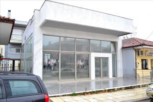 Бизнес 480 m² в пригороде Салоник