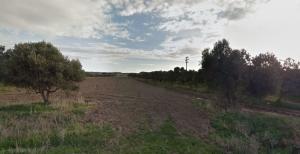 Земельный участок 58530 m² на Додеканес