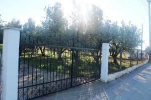 Земельный участок 22000 m² в Халкидиках