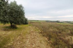 Земельный участок 7350 m² в пригороде Салоник