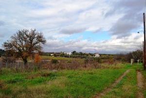 Земельный участок 7450 m² на Кассандре (Халкидики)