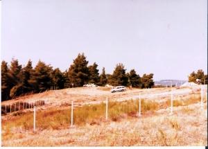 Земельный участок 5150 m² на Кассандре (Халкидики)