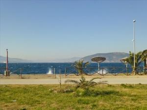 Земельный участок 1300 m² в центральной Греции