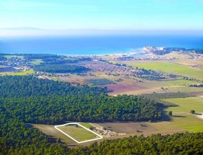 Земельный участок 16000 m² на Кассандре (Халкидики)