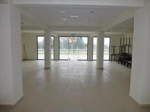 Бизнес 270 m² на Олимпийской Ривьере