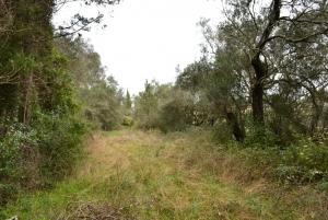 Земельный участок 9000 m² на о. Корфу