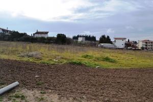 Земельный участок 3634 m² в пригороде Салоник