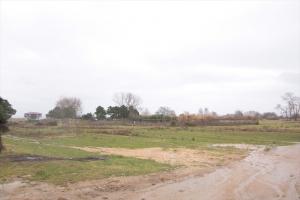 Земельный участок 2500 m² на Афоне (Халкидики)