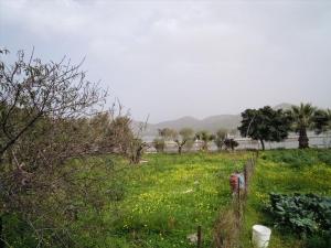 Земельный участок 204 m² на Крите