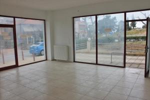 Бизнес 250 m² в Халкидиках