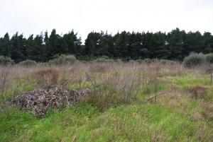 Земельный участок 8000 m² на Кассандре (Халкидики)