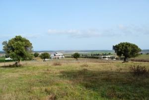 Земельный участок 5000 m² на Кассандре (Халкидики)