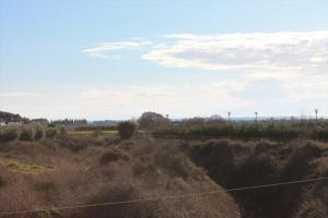 Земельный участок 5500 m² в Халкидиках