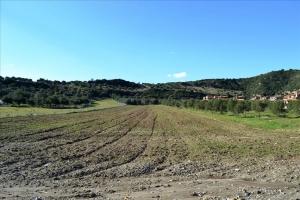 Земельный участок 15000 m² на Кассандре (Халкидики)