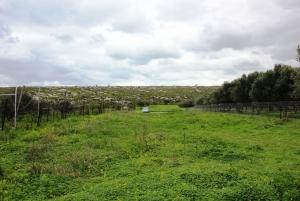 Земельный участок 1104 m² на Крите